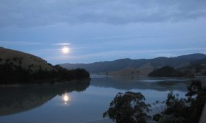 calming, romatic evening in Cable Bay Nest
